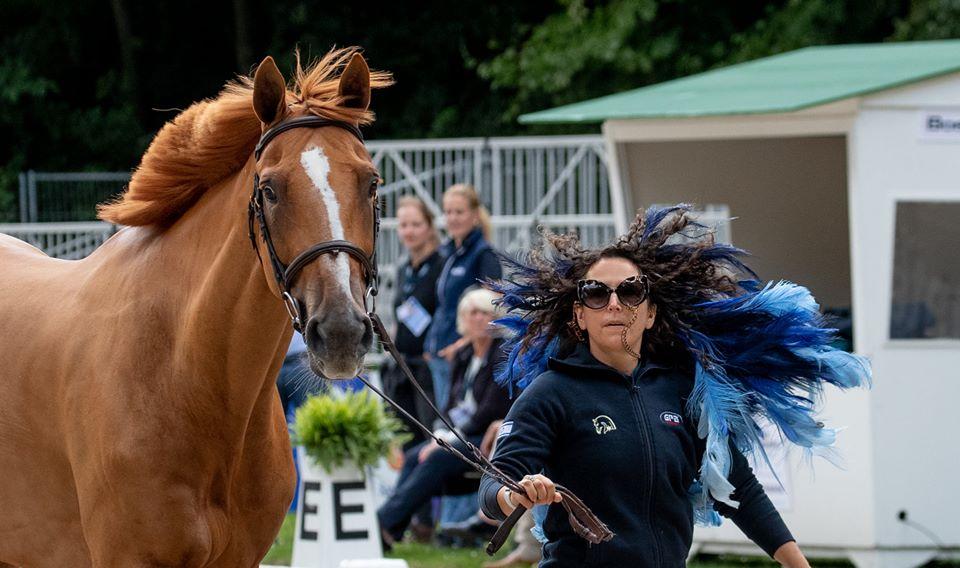 רוכבת-סוסים-וולדמן